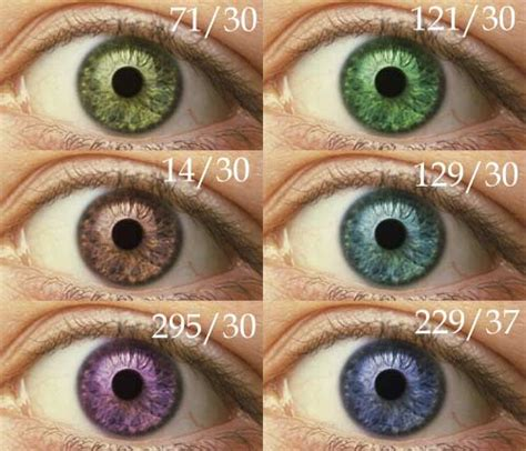 Human Eye Color Determines Personality | Who? Not Me! You