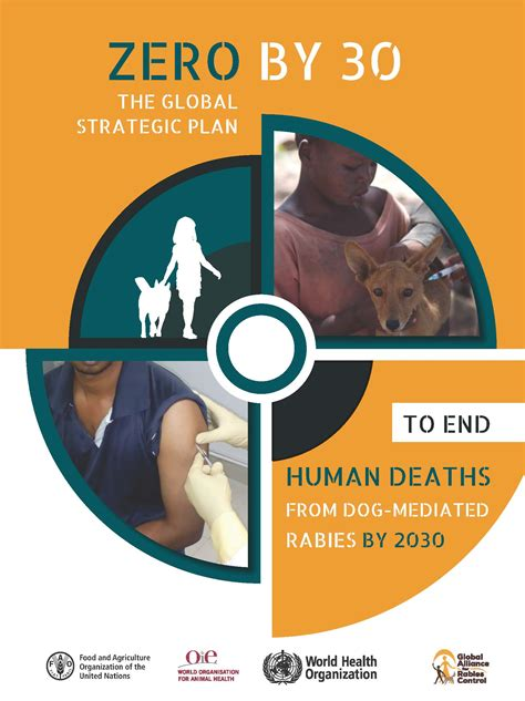 Zero by 30: the global strategic plan to end human deaths