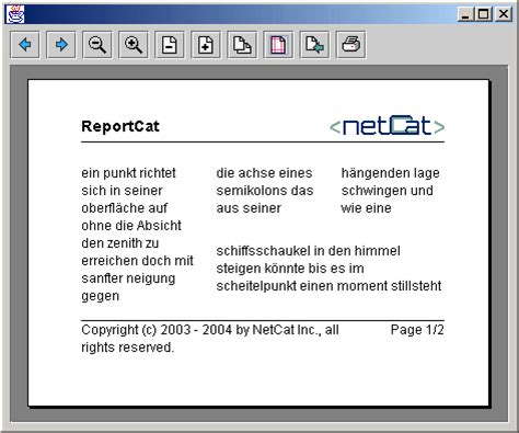 Java Report Print Library: ReportCat - The Printing and